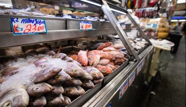 Aceitação do pescado certificado é tema de pesquisa de mercado desenvolvida pelo Instituto de Pesca em Votuporanga